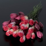 Тюльпан, тон красный - 10мм (40шт.)