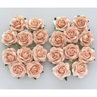 Роза шпалерная,  цвет персиковый – 40мм (20шт.)
