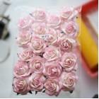 Роза шпалерная,  тон светло-роз./ слон.кость -  40мм (20шт.)