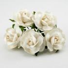 Дикая роза, слоновая кость - 30мм (50шт.)