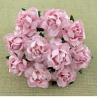 Роза коттеджная, тон бледно розовый - 25мм (20шт.)