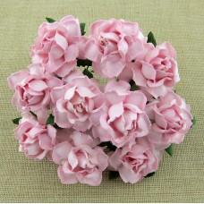 Роза коттеджная, тон бледно розовый – 30мм (20шт.)