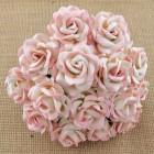 Роза Челси,  цвет нежно розовый / айвори – 35мм (25шт.)