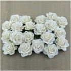 Роза шпалерная,  цвет белый – 35мм (20шт.)