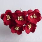 Цветок вишни, красный - 25мм (50шт.)