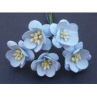 Цветок вишни, светло-голубой - 25мм (50шт.)