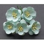 Цветок вишни, бирюза - 25мм (50шт.)