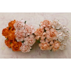 Роза коттеджная, тон бело-оранжевый - 25мм (20шт.)