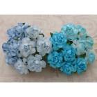 Роза коттеджная, голубые тона - 25мм (20шт.)