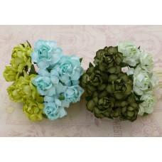 Роза коттеджная, зеленые тона – 30мм (20шт.)