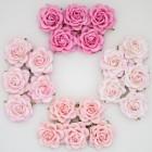 Роза шпалерная, тон розовый – 40мм (20шт.)