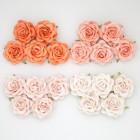 Роза шпалерная, тон персиковый, оранж. - 35мм (20шт.)