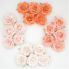 Роза шпалерная, тон персиковый, оранж. – 40мм (20шт.)