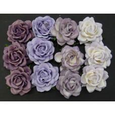 Роза шпалерная, пурпурно-лиловые тона – 35мм (20шт.)