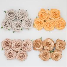 Роза шпалерная, земляные тона – 35мм (20шт.)