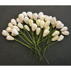 Тюльпан, тон бело-кремовый - 10мм (40шт.)