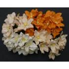 Лилия, тон оранжево-персиковый - 30мм (40шт.)
