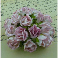 Дикая роза, бело-бледнорозовая - 20мм (50шт.)