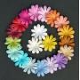 Цветочки плоские (70)