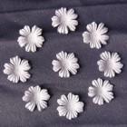Цветочки  плоские белые - 22мм (100шт)