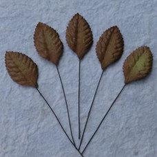 Лист шелковицы коричневый -35мм (100шт.)