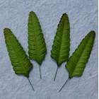 Лист папоротника зеленый -70мм (100шт.)