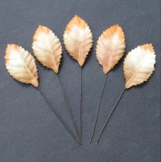 Лист шелковицы бело-коричневый -35мм (100шт.)
