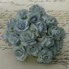 Дикая роза, бледно-голубые тона – 30мм (50шт.)