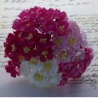 Цветок вишни, розовый микс - 25мм (50шт.)