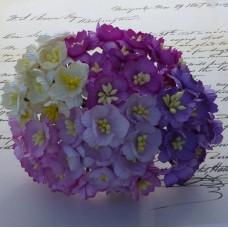 Цветок вишни, пурпурный/лиловый микс - 25мм (50шт.)