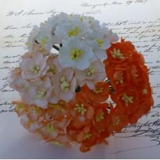 Цветок вишни, оранжевый/белый микс - 25мм (50шт.)
