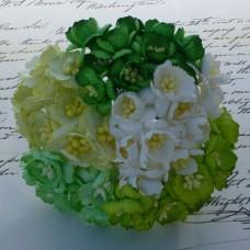 Цветок вишни, зеленый/белый микс - 25мм (50шт.)