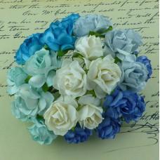 Дикая роза, голубые/вода/белые тона - 30мм (50шт.)