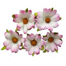 Хризантема, тон белый с розовым - 45мм (50шт.)