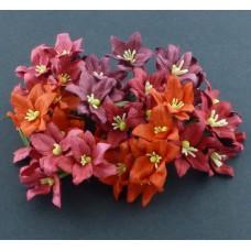 Лилия, красные тона - 30мм (40шт.)