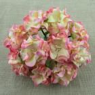 Гардения, цвет шампанское с розовый - 60мм (25шт.)