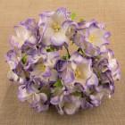 Гардения, цвет бело-лиловый - 60мм (25шт.)
