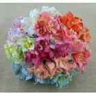 Лилия, цветное ассорти - 30мм (50шт.)