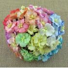 Цветок яблони, цветное ассорти - 25мм (50шт.)