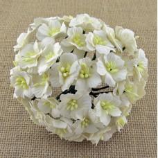 Цветок яблони, цвет белый - 25мм (50шт.)