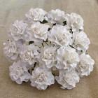 Роза Таскания, цвет белый - 30мм (20шт.)