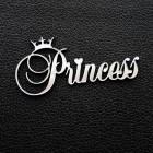 "Табличка ""Princess"", серебро, 35*70мм"