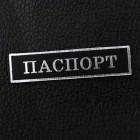 "Табличка ""Паспорт"", чёрный/серебро, 12*50мм"