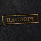 "Табличка ""Паспорт"", чёрный/золото, 12*50мм"