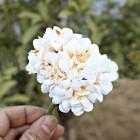 Тканевые цветочки кремовые